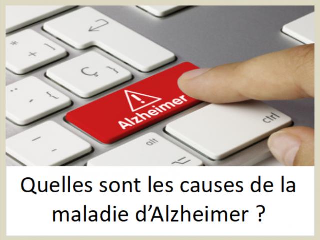 Quelles sont les causes de la maladie d'Alzheimer ?